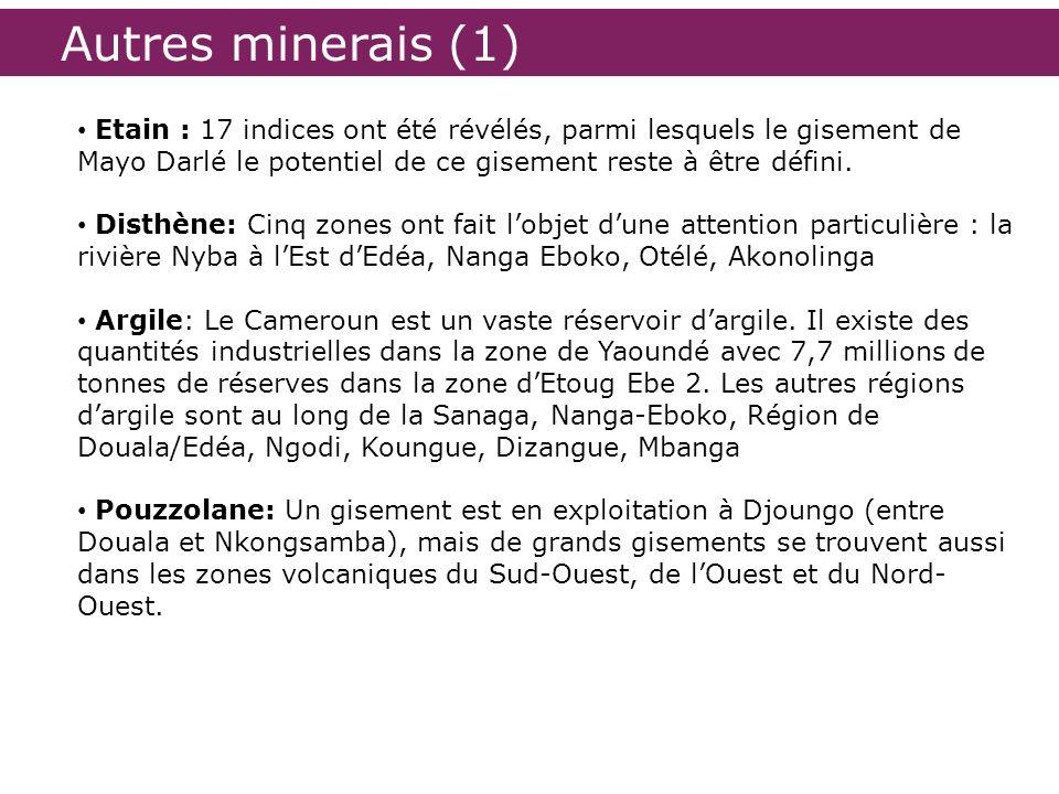 Autres minerais (1) Etain : 17 indices ont été révélés, parmi lesquels le gisement de Mayo Darlé le potentiel de ce gisement reste à être défini.