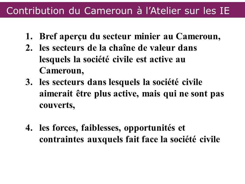Contribution du Cameroun à l'Atelier sur les IE