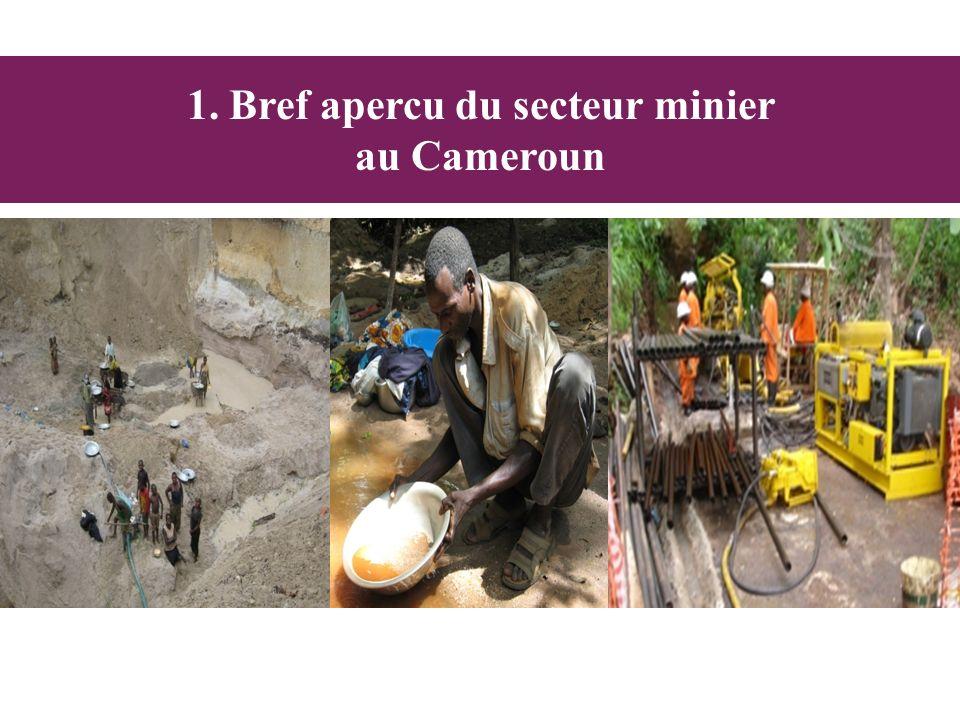 1. Bref apercu du secteur minier