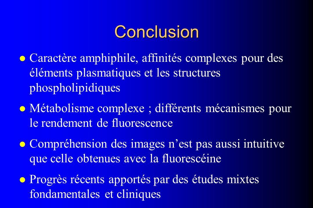 ConclusionCaractère amphiphile, affinités complexes pour des éléments plasmatiques et les structures phospholipidiques.