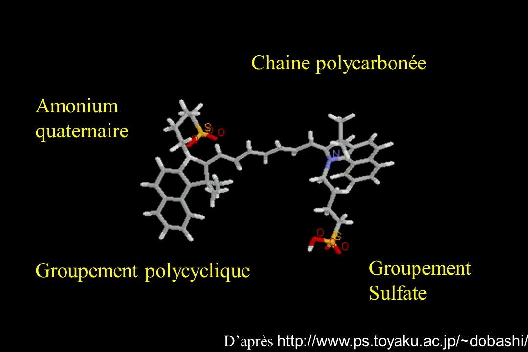 Groupement polycyclique Groupement Sulfate
