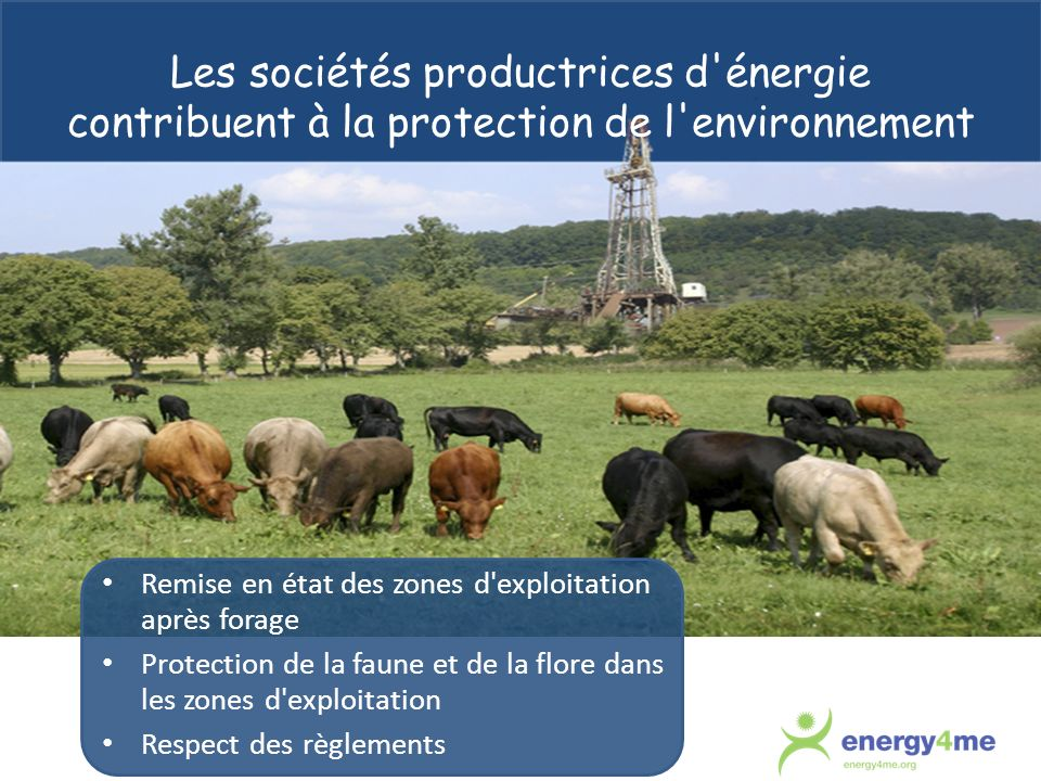 Les sociétés productrices d énergie contribuent à la protection de l environnement