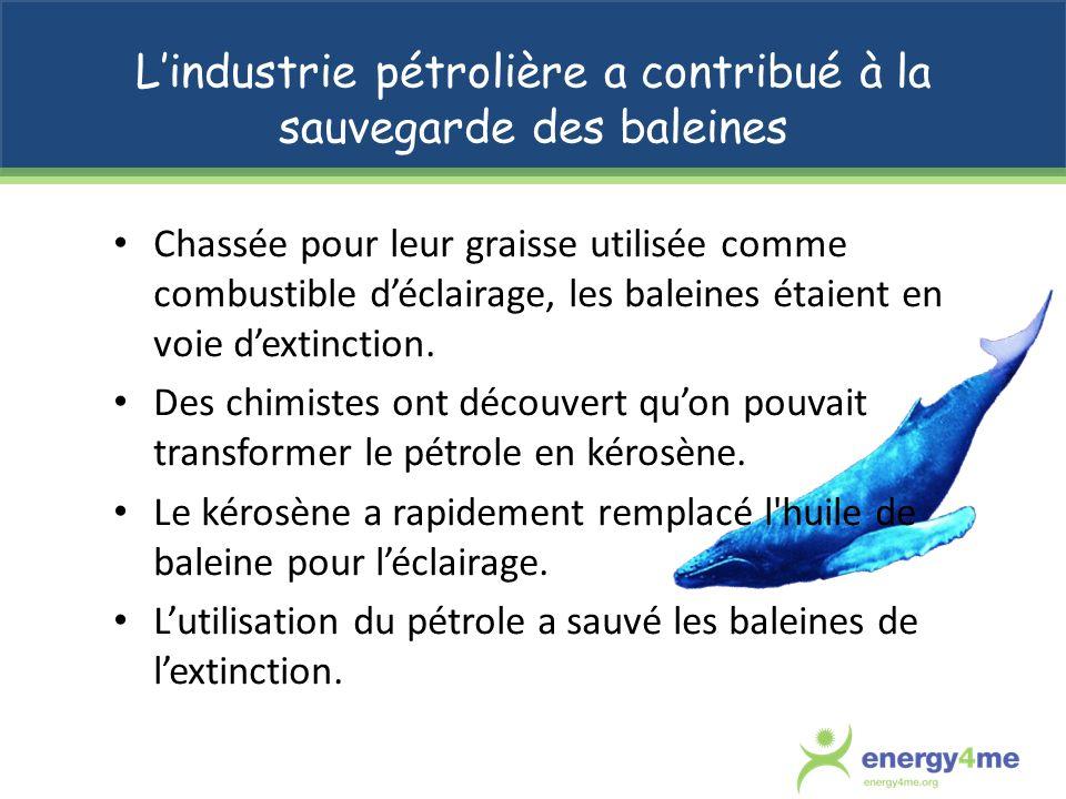 L'industrie pétrolière a contribué à la sauvegarde des baleines