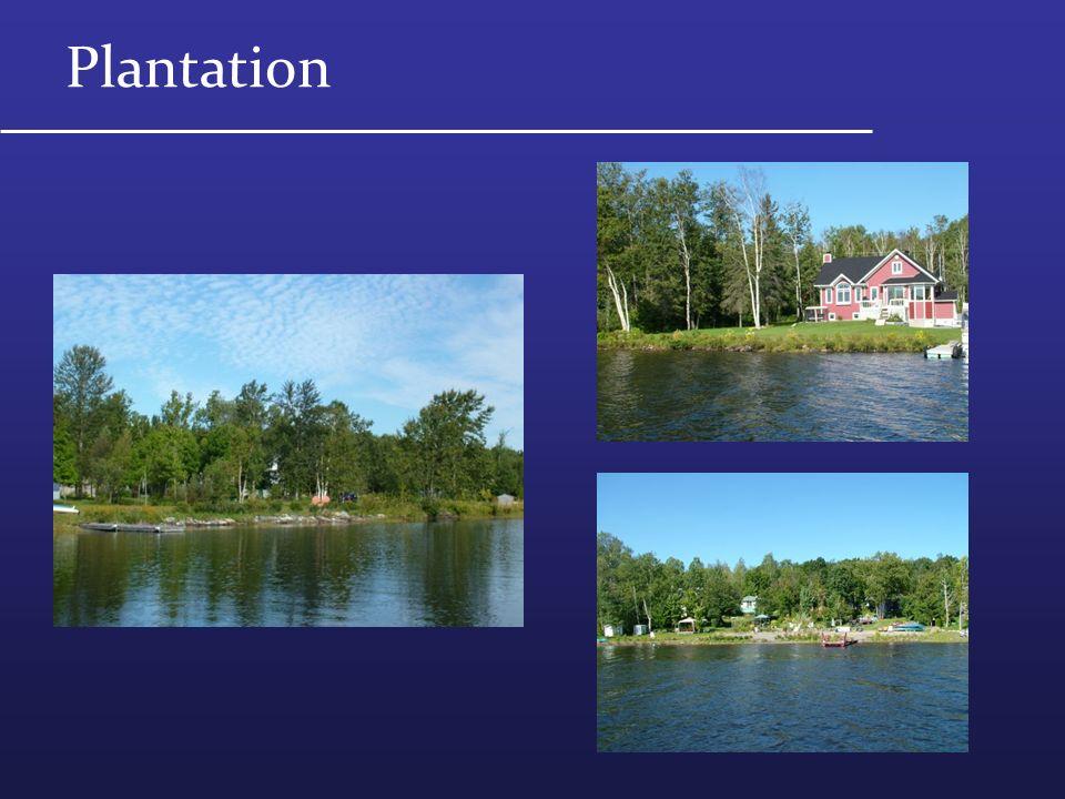agir pour la protection des lacs le cas du lac de la grande fourche ppt t l charger. Black Bedroom Furniture Sets. Home Design Ideas
