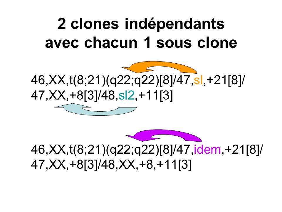 2 clones indépendants avec chacun 1 sous clone