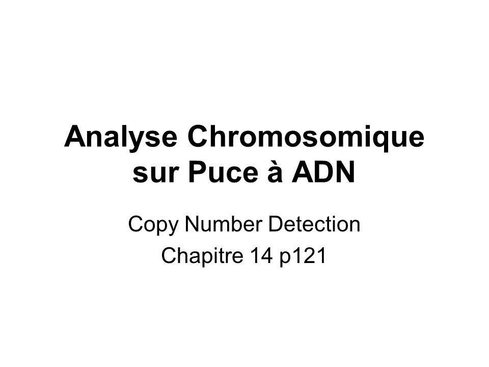 Analyse Chromosomique sur Puce à ADN