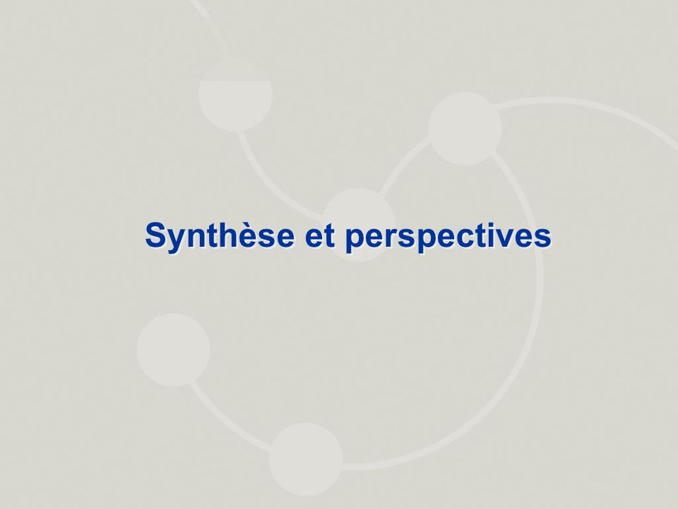 Synthèse et perspectives