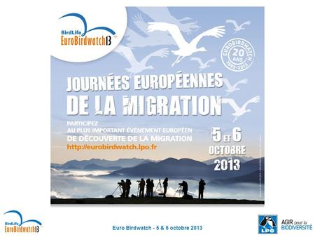 Euro Birdwatch - 5 & 6 octobre 2013