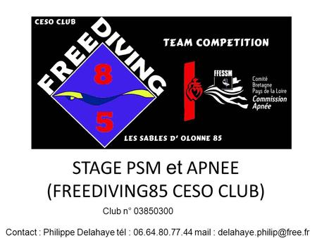 STAGE PSM et APNEE (FREEDIVING85 CESO CLUB)