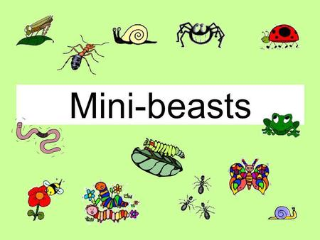 Mini-beasts. This is a Magic PowerPoint or How to make sure this PowerPoint behaves like an Interactive Whiteboard.