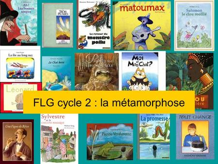 FLG cycle 2 : la métamorphose