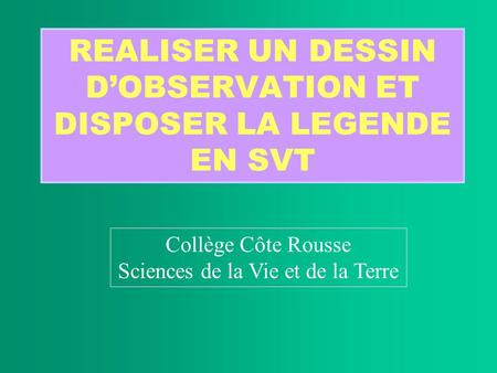 REALISER UN DESSIN D'OBSERVATION ET DISPOSER LA LEGENDE EN SVT