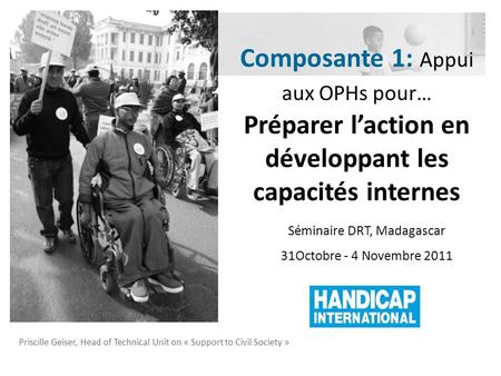 Priscille Geiser, Head of Technical Unit on « Support to Civil Society » Séminaire DRT, Madagascar 31Octobre - 4 Novembre 2011 Composante 1: Appui aux.
