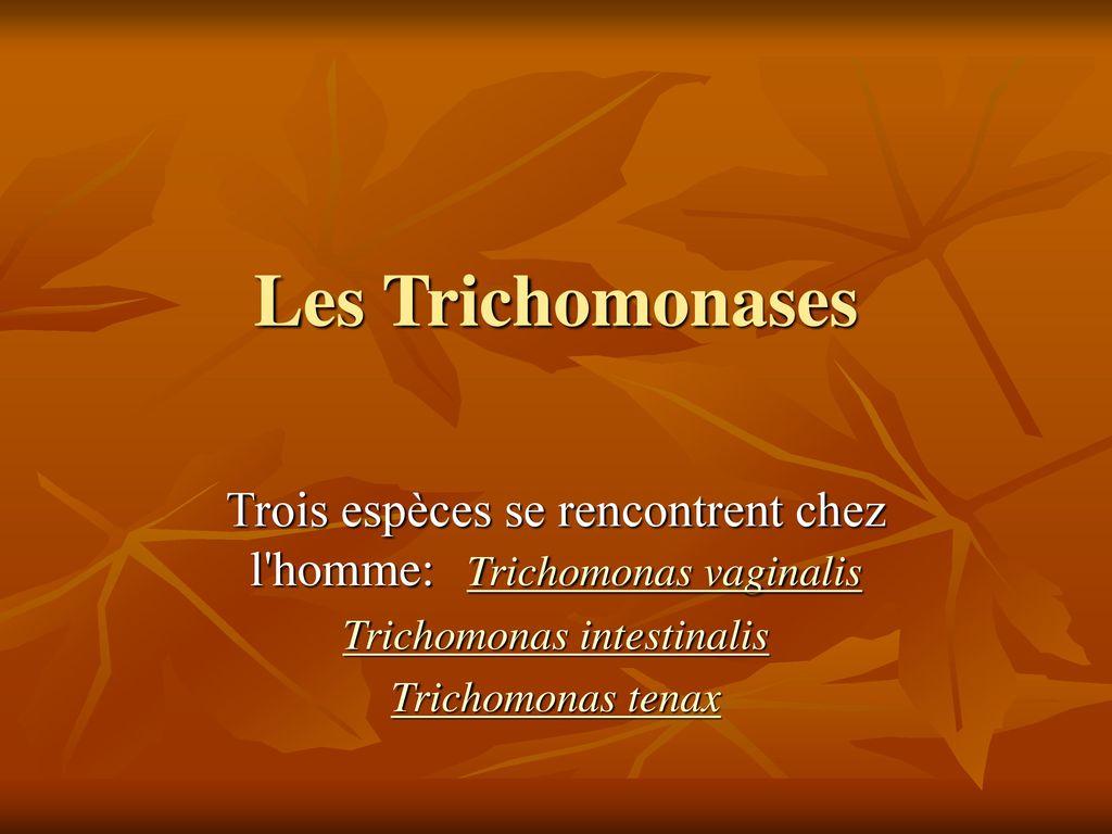 recherche trichomonas chez lhomme site de rencontre maghrebin gratuit non payant