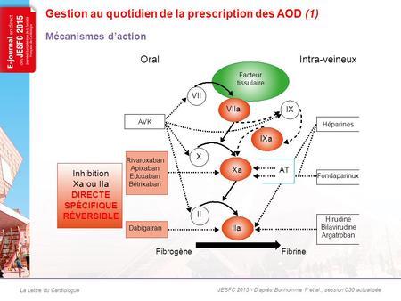 Warfarin Quotidien