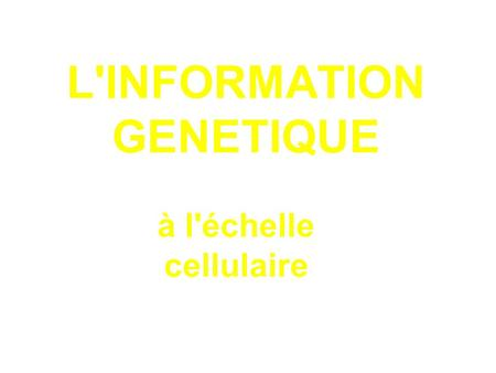 L'INFORMATION GENETIQUE