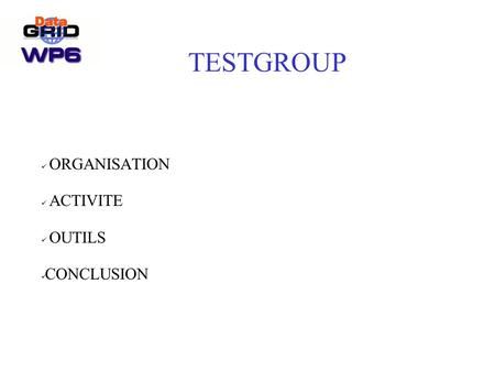 TESTGROUP ORGANISATION ACTIVITE OUTILS CONCLUSION.