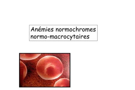 Anémies normochromes normo-macrocytaires.