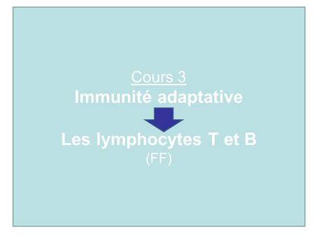 Immunité adaptative Les lymphocytes T et B