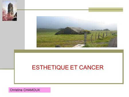 ESTHETIQUE ET CANCER Christine CHAMOUX.