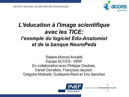 banque neuropeda