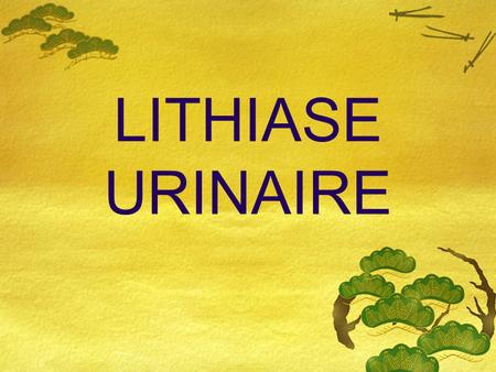 LITHIASE URINAIRE.