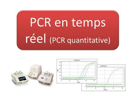 PCR en temps réel (PCR quantitative)