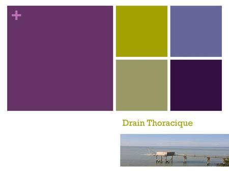 Drain Thoracique.