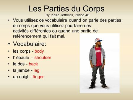 Les Parties du Corps Vocabulaire: