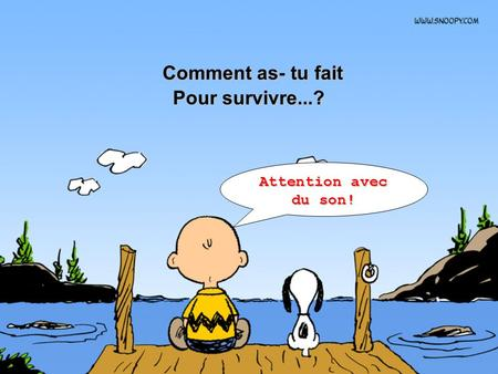 Comment as- tu fait Comment as- tu fait Pour survivre...? Attention avec du son!