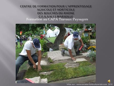 Formation au CAPA Travaux Paysagers