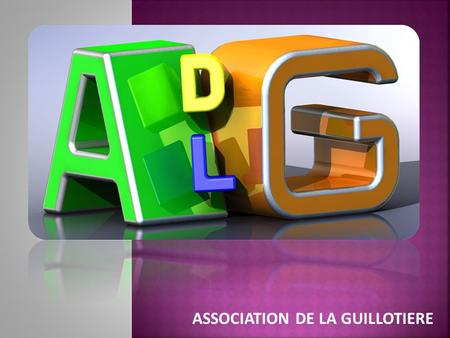 ASSOCIATION DE LA GUILLOTIERE. 4 FEVRIER 2011 19h00.