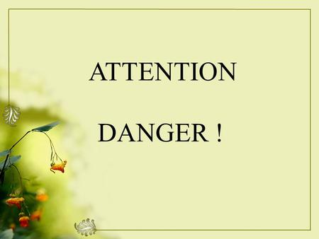 ATTENTION DANGER !.
