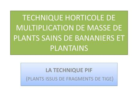 LA TECHNIQUE PIF (PLANTS ISSUS DE FRAGMENTS DE TIGE)