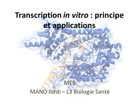 Transcription in vitro : principe et applications