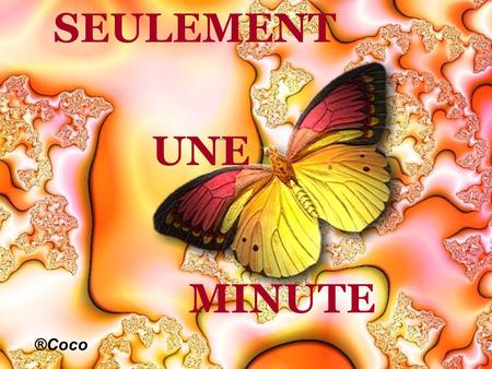 SEULEMENT UNE MINUTE ®Coco.