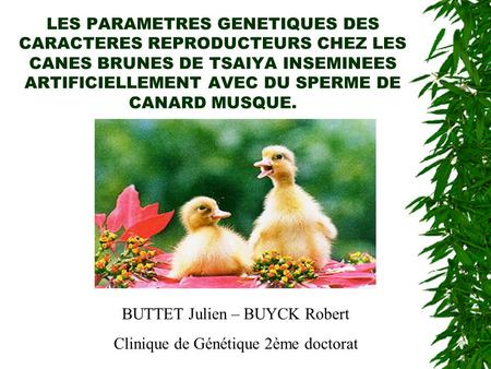 BUTTET Julien – BUYCK Robert Clinique de Génétique 2ème doctorat