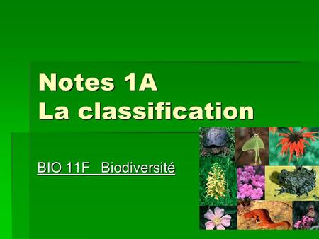 Notes 1A La classification