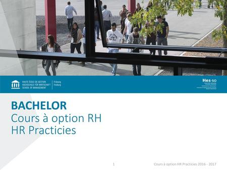Cours à option RH HR Practicies