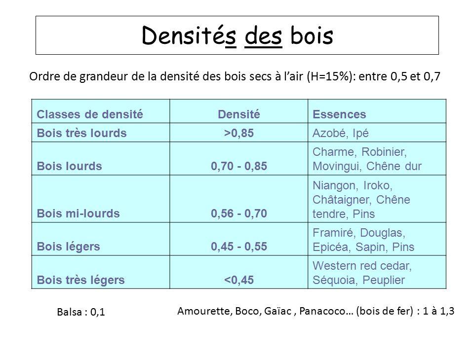Densit s des bois m1 ue biophysique des tissus v g taux - Difference entre pin et sapin ...