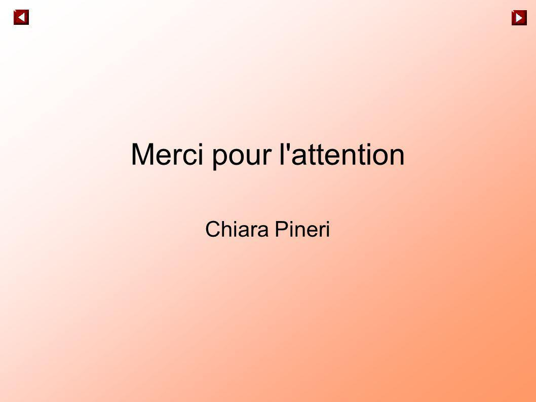 Merci pour l attention Chiara Pineri