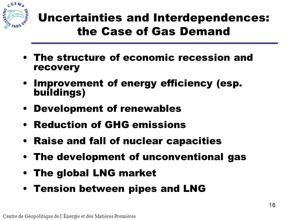 Uncertainties and Interdependences: the Case of Gas Demand