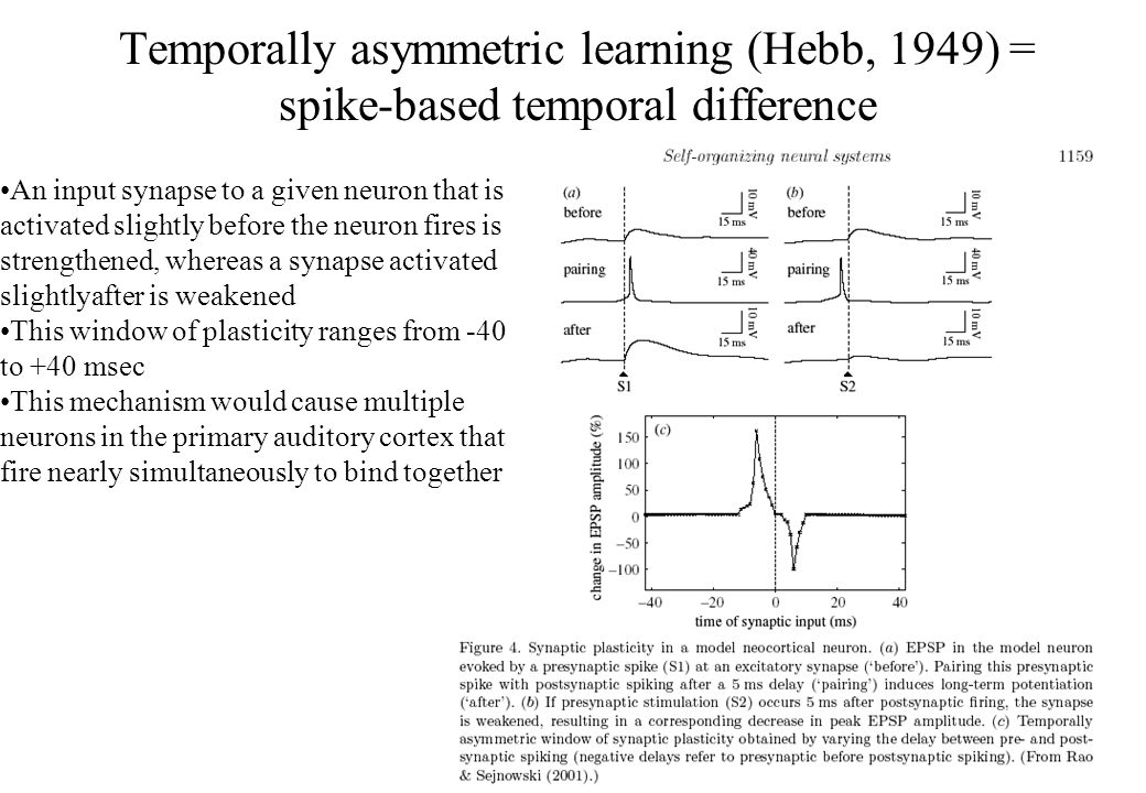 Temporally asymmetric learning (Hebb, 1949) = spike-based temporal difference