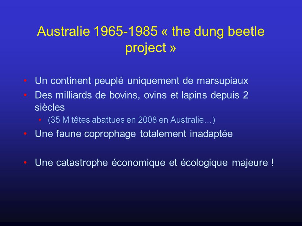 Australie 1965-1985 « the dung beetle project »