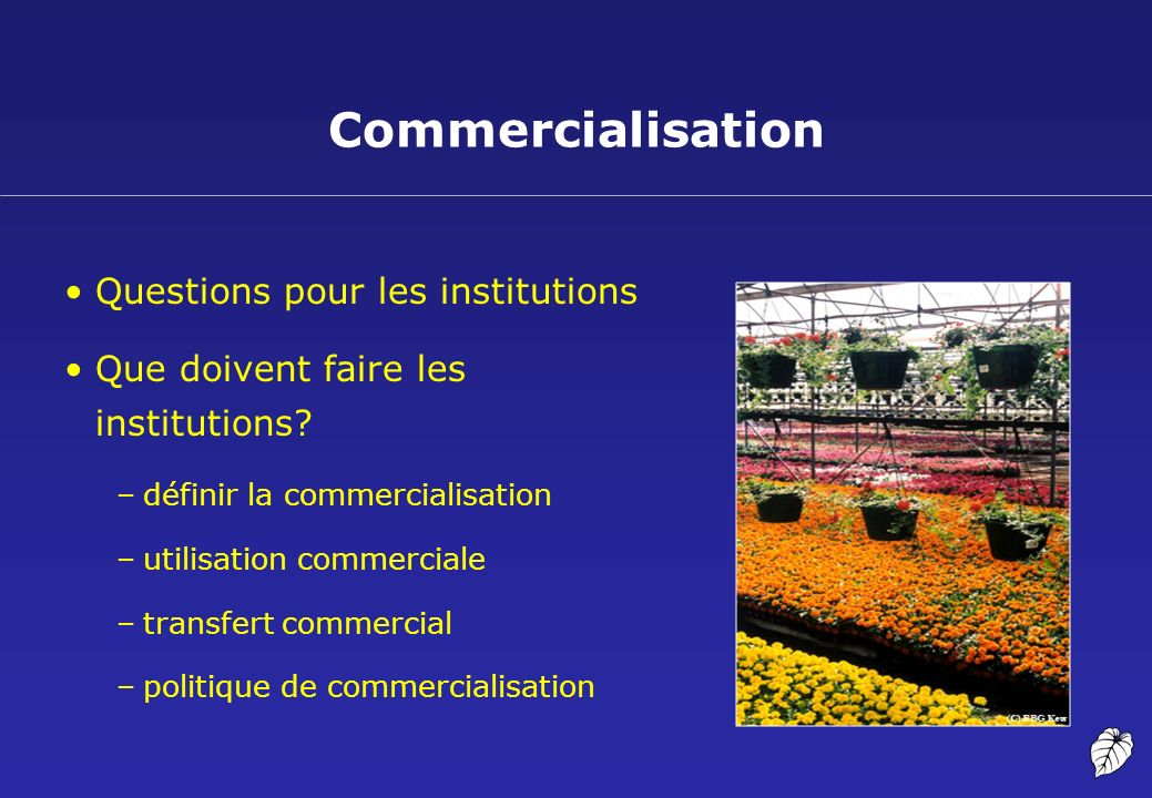 Commercialisation Questions pour les institutions