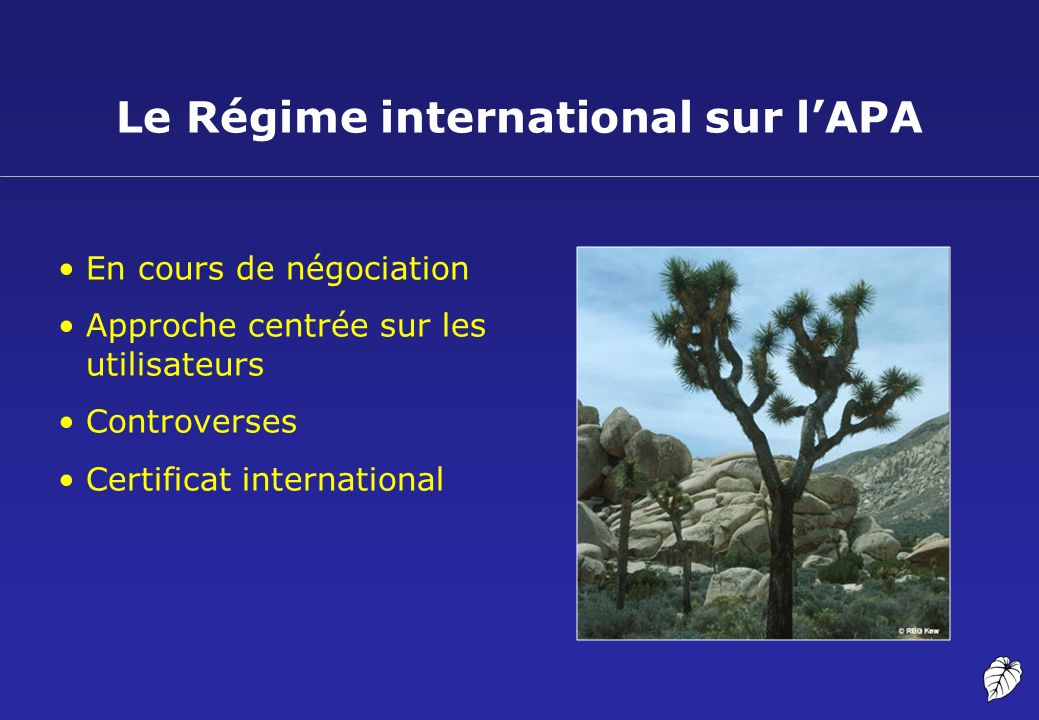 Le Régime international sur l'APA