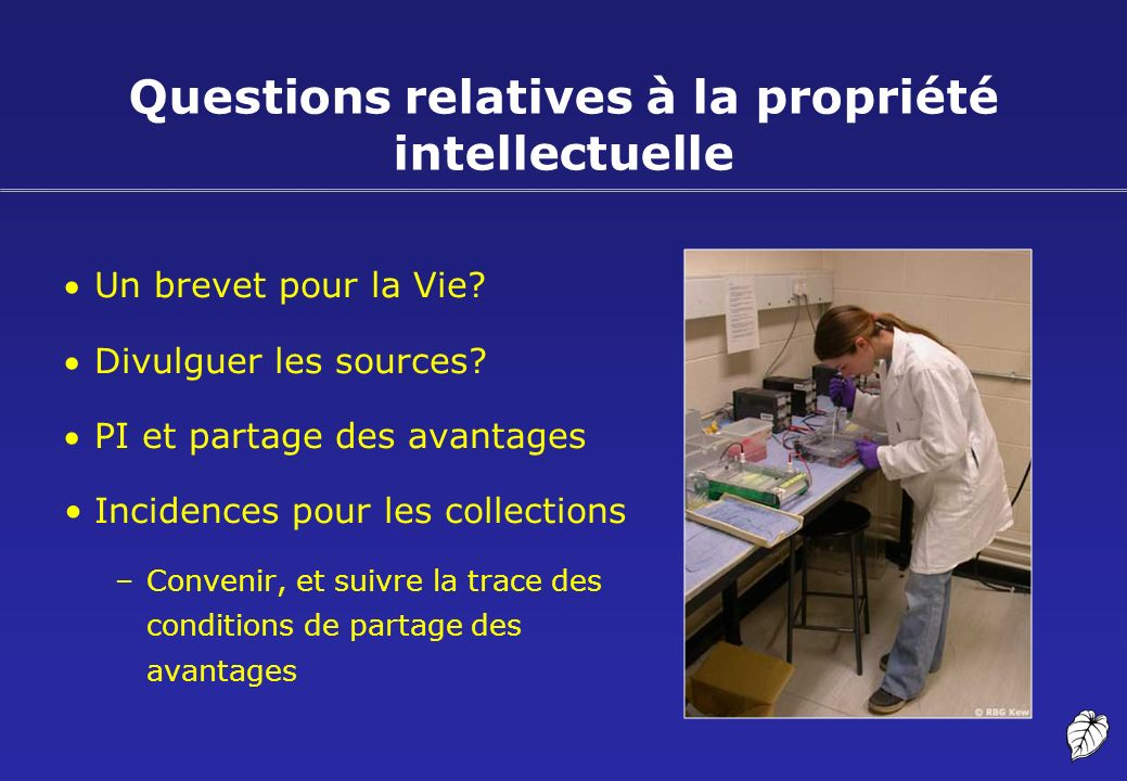 Questions relatives à la propriété intellectuelle