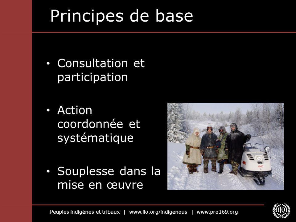 Principes de base Consultation et participation