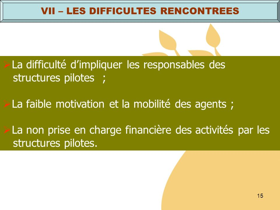 VII – LES DIFFICULTES RENCONTREES