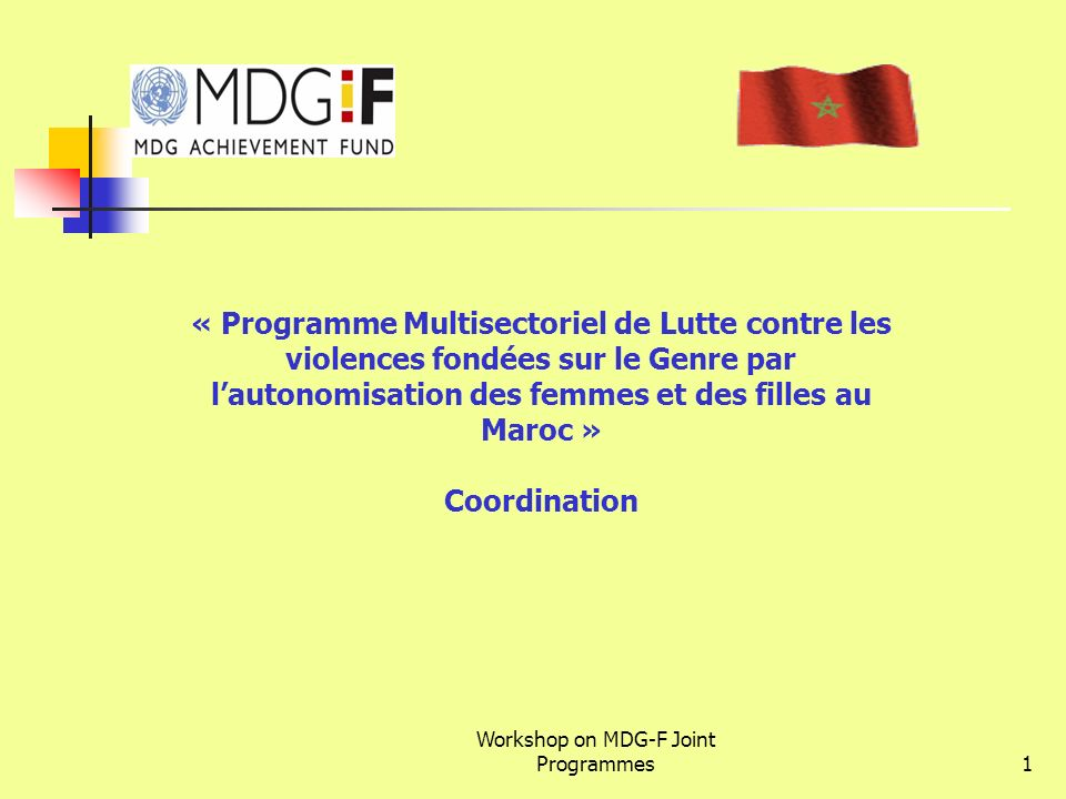 Workshop on MDG-F Joint Programmes